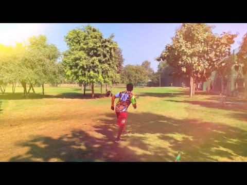 HGC Frisbee Golf: Pro Edition