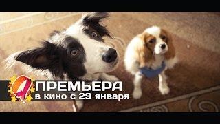 Ёлки лохматые (2015) HD трейлер | премьера 29 января