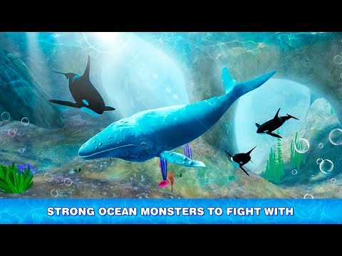 Humpback Whale Simulator - Fish Life Game Gameplay Video Android/iOS