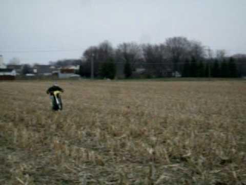 rm 250 whellie in corn stalks