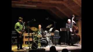 Jon Irabagon Trio Foxy - Live at Kaleidophon Ulrichsberg 2013-05-04