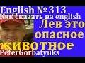 Английский, №313, как сказать на английском, короткие фразы на английском