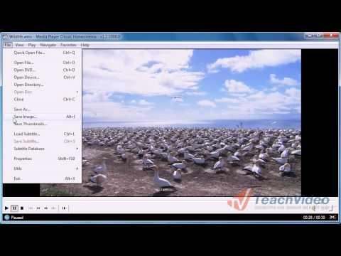 Как делать скриншот с видео на компьютере