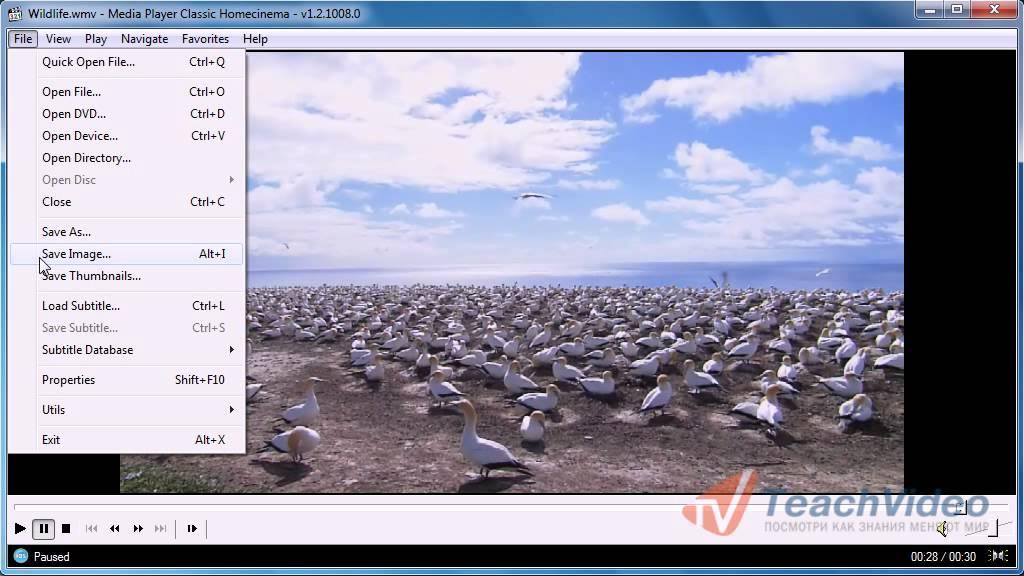 Как сделать видео скрин