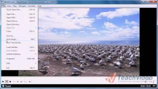 Как сделать скриншот с видео?(http://www.teachvideo.ru/course/355 - еще больше обучающих роликов о видео ответят на ваши вопросы на нашем сайте бесплатно!..., 2011-09-12T11:21:46.000Z)