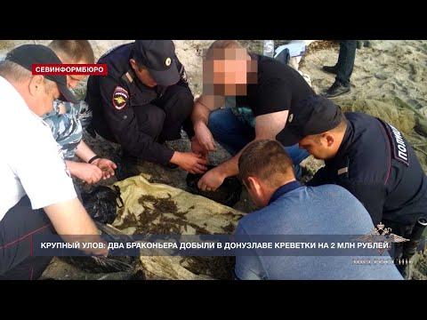 НТС Севастополь: Крымские браконьеры выловили в Донузлаве креветки почти на 2 миллиона рублей