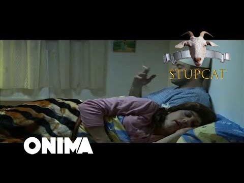 STUPCAT | Seriali Amkademiku Episodi 1 TRAILER