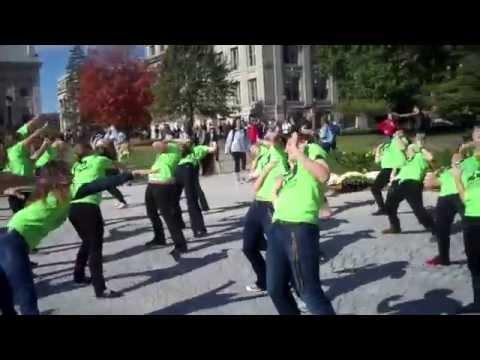 UIDM 19 | Flashmob