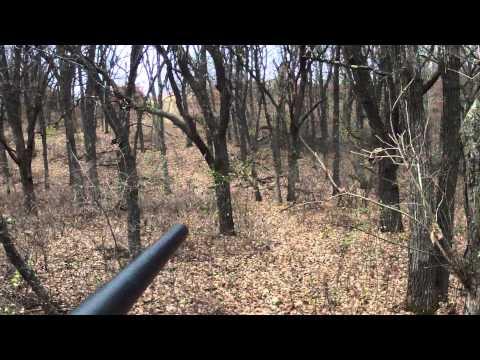 Opening Morning Deer (8 Point Buck) With Remington 270, Minnesota 2014 Firearms Season