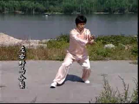 Wu 45 with Zong Weijie