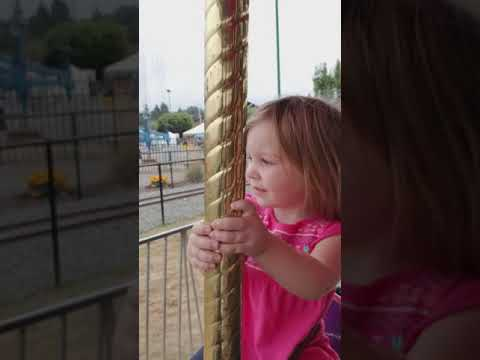 Merry Go Round at the State Fair 2017