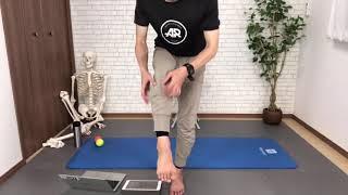 体幹・上肢のクロスポイント(フル)