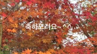 스폰지밥 네모바지 이벤트 당첨자 발표 라임튜브