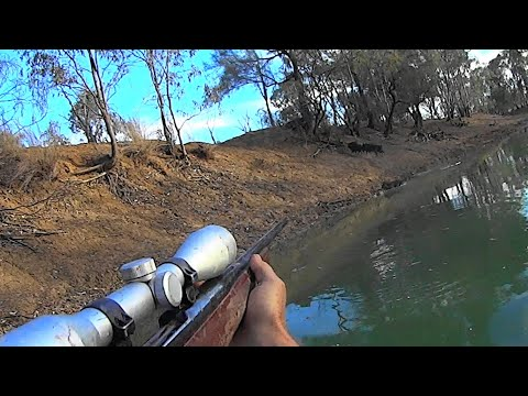 Lockdown clip rolling pigs/ hogs hunting from the kayak.