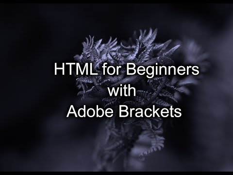 Adobe Brackets & HTML For Beginners: Pt. 1