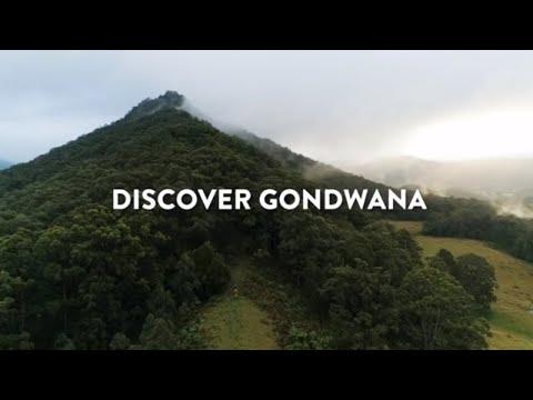 Discover Gondwana Ancient Earth | #NSWParks