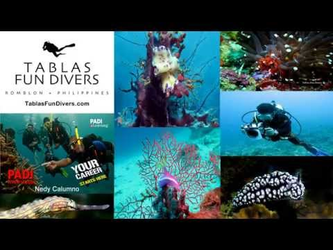 Nedy Calumno scuba dive pictures at Tablas Island Romblon