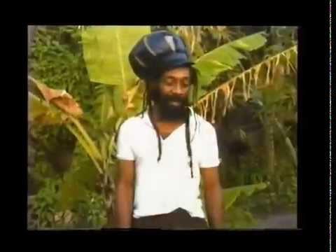 Jah D - Kingston Ghettos and Gardens