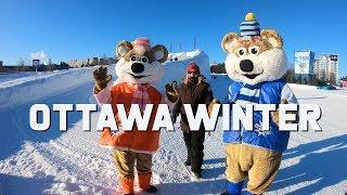 Ottawa Winter Travel Guide | Winterlude | The Planet D Travel Vlog