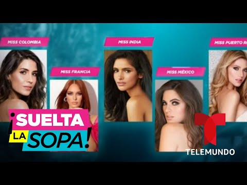 Conozcan a las 6 favoritas de Suelta la Sopa para ganar Miss Universo 2019 | Suelta La Sopa