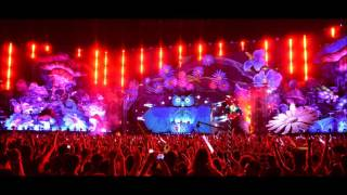 Under The Electric Sky - Beautiful Day Song (EDC 2013)