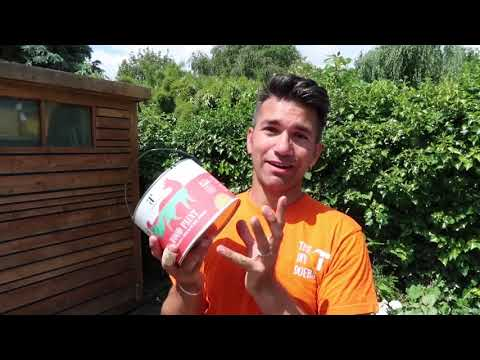 How to Maintain and Paint Decking with Thorndown Wood Paint and DIY Doer Wayne Perrey