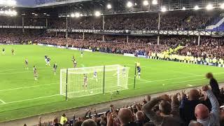Goal. Idrissa Gana Gueye scores Everton's 2nd