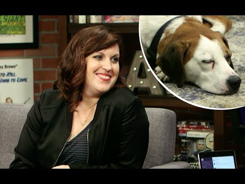 Downward Dog's Allison Tolman and Ned the dog are consummate professionals