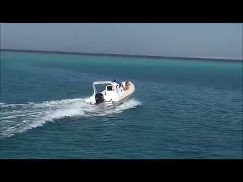 Relaxing Ride on Tiger Marine 850 Topline