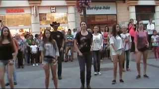 VIDOR fesztivál 2014. - Flashmob + After Dance - Eastern Eagles Line Dance Club