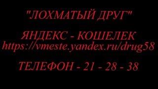 Автор: Ольга Гусева ЛОХМАТЫЙ ДРУГ СОБАКИ
