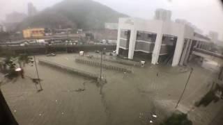 Typhoon Mangkhut HK noon 颱風山竹香港中午