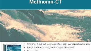 Film_Methionin.avi