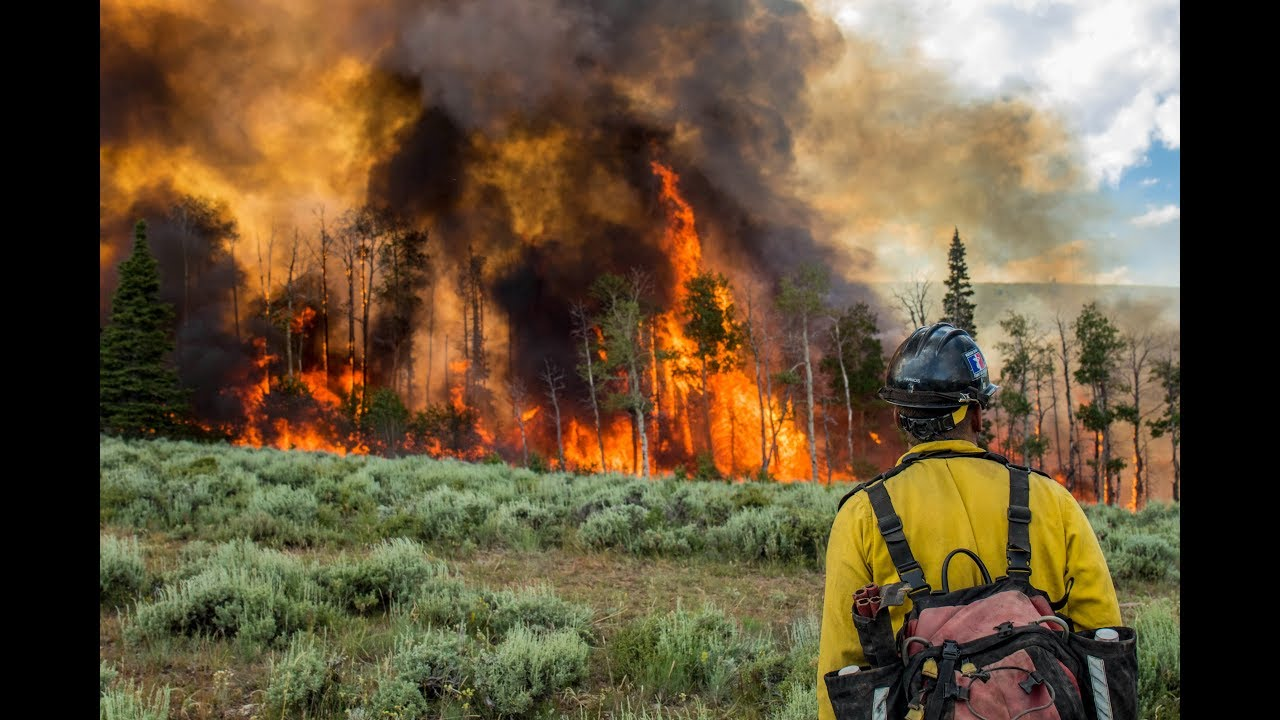 Prescribed Fire Bureau Of Land Management Wyoming Doovi