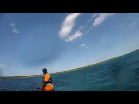Zanzibar Blue Safari