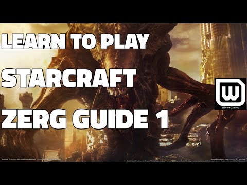 Learn to play Starcraft - Zerg Starter Guide #1 - Updated (2017)
