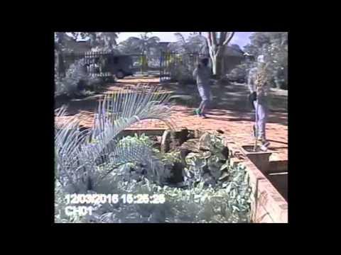 Daylight burglary in Richards Bay