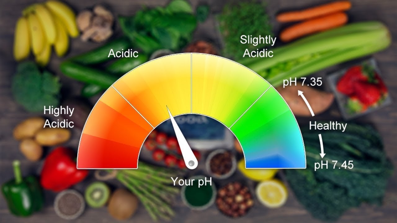 10 Highly Alkaline Foods That Will Benefit Your Body (Alkaline Foods List)