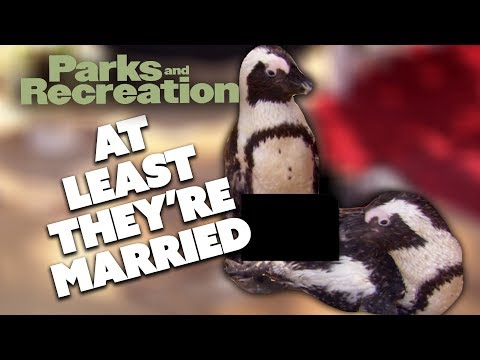 Gay Penguins | Parks And Recreation | Comedy Bites