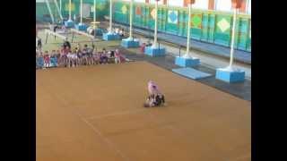 New Generation SISEL Спортивная акробатика 3 юношеский разряд