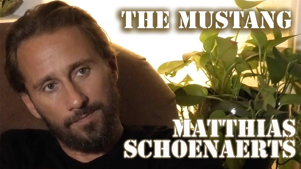 Download DP/30: The Mustang, Matthias Schoenaerts