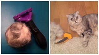 Расческа фурминатор для шерсти животных обзор / Furminator для кошек
