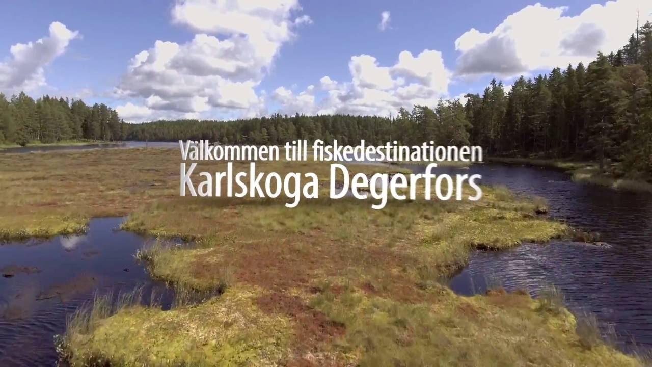 Resultado de imagem para Degerfors