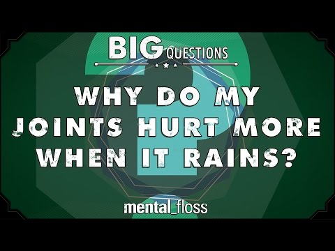 Why do my joints hurt more when it rains?  - Big Questions - (Ep. 203)