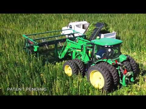 Hemp has arrived: Colorado crops double after Farm Bill
