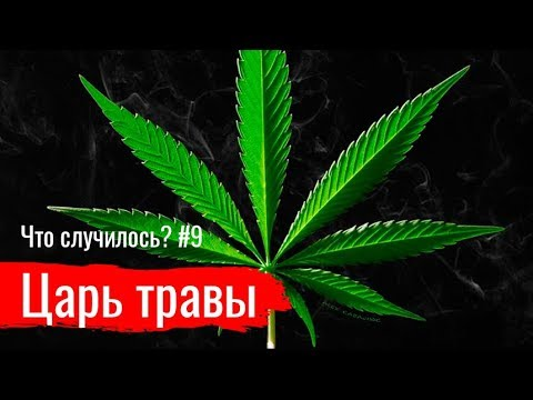 Медведев марихуана семена марихуаны gagarin