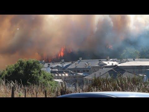 Burnside fire! Dunedin 2018