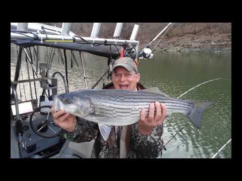 2017-03-25 Lake Cumberland KY Stripers Lance Sasser Guide; Chuck & John