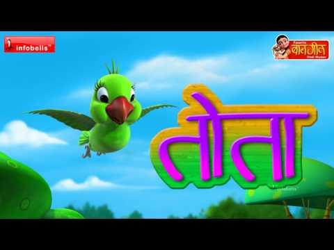 हिंदी कविता विडियो