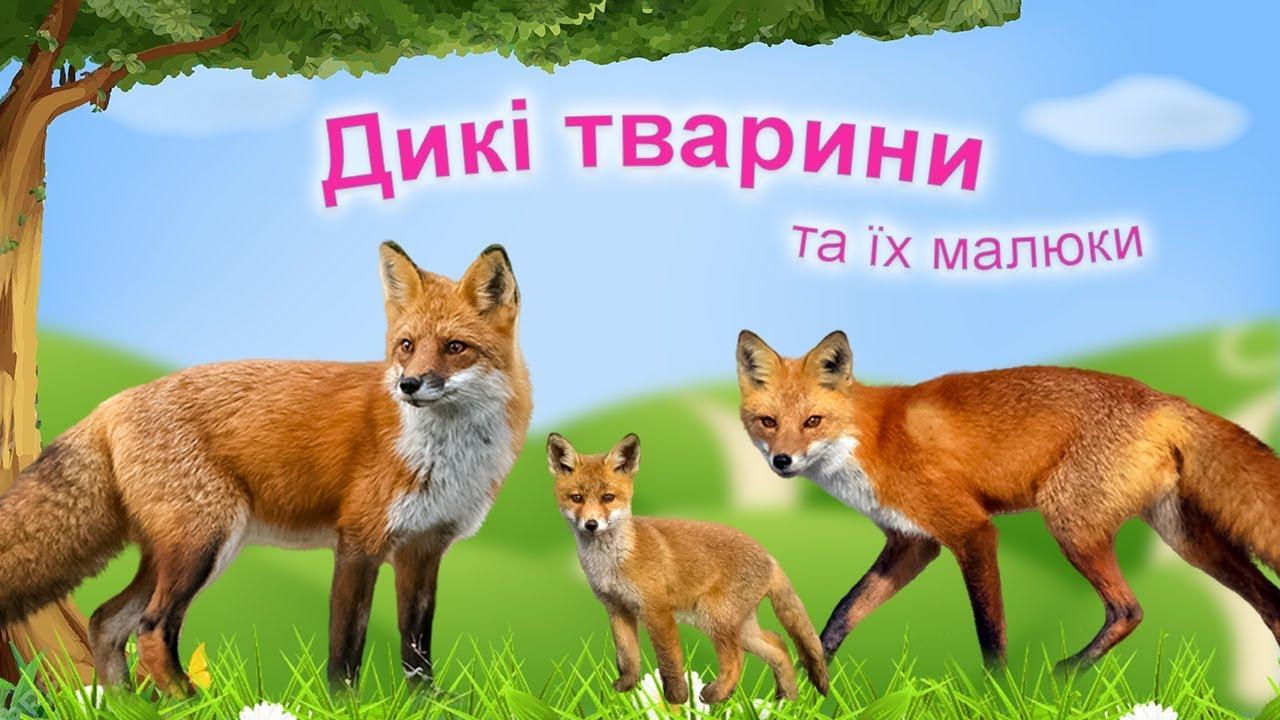 мета для заняття про диких тварин сбербанк онлайн кредит ставка